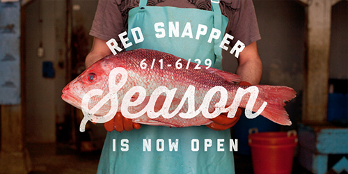 redsnapperseason
